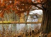 Greizer Park im Herbst